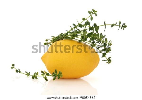Lemon fruit with lemon thyme herb leaf sprig isolated over white background.