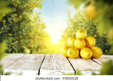 lemon fruits on wooden desk in garden