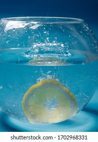 Lemon and glass aquarium with water