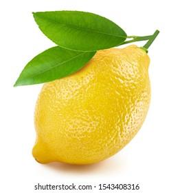Lemon isolated on white background. Lemon fruit Clipping Path. Quality macro photo