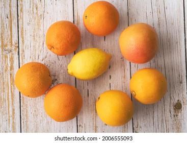 Lemon put at the middle of Cara Cara and Navel Orange,Grapefruit,on background