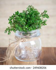 Lemon Thyme in the glass jar