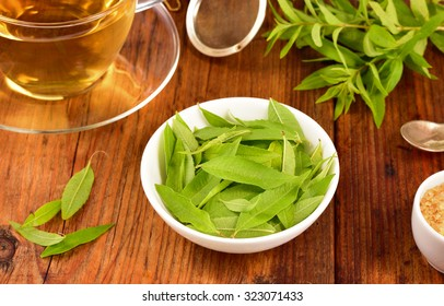 Lemon verbena leaves on white bowl and verbena tea on wooden table. Aloysia citrodora.