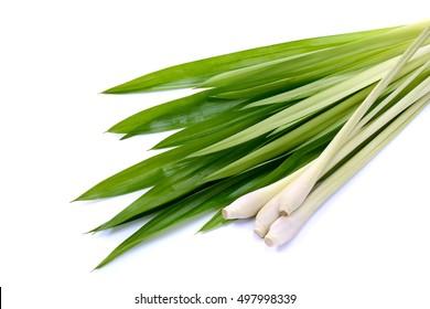 Lemongrass and fresh pandan leaves on white.