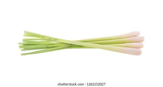 Lemongrass isolated on white background