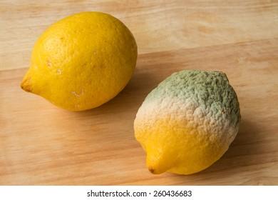 Lemons - one good one rotten - wood background