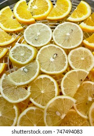 Lemons and oranges cut into slices in drying
