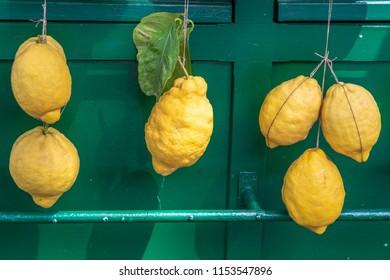 Lemons for sale hanging against a green background.