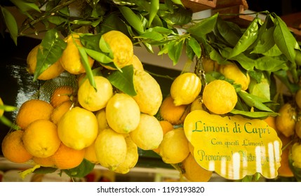 """Lemons with text """"lemons from Capri island. From these lemons we prepare our frozen dessert"""" written on a sign"""