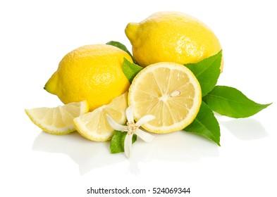 Lemons tree flower and a lemons isolated on white background
