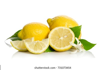 Lemons tree flower and a lemons isolated on white background
