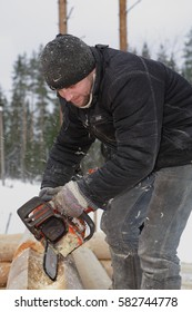 Leningrad Region, Russia - February 2, 2010: Processing logs, Worker cuts out the lateral groove and corner notches using chain saw.