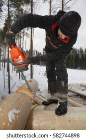 Leningrad Region, Russia - February 2, 2010: Building the log walls, cutting round saddle notch using chainsaw.