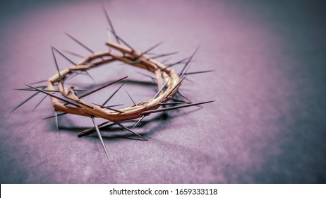 Lent Season,Holy Week and Good Friday concepts -image of crown of thorns in purple vintage background  - Shutterstock ID 1659333118