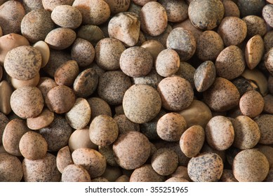 Lentil Whole seeds with cover isolated on white background