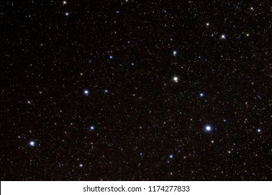 Leo the brilliant Lion stands out as a constellation of bright stars against an inky-black night sky.  Leo is one of the constellations of the Zodiac. Regulus, the heart of Leo, shines brightest.