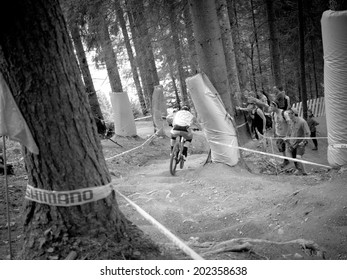 LEOGANG, AUSTRIA - JUNE 15, 2014 : Aaron Gwin of Specialized Racing DH is seen during pre-final training at the UCI Downhill Mountain Bike World Cup in Leogang, Austria.