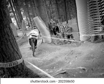 LEOGANG, AUSTRIA - JUNE 15, 2014: Josh Brzceland of Santa Cruz Syndicate is seen during pre-final training at the UCI Downhill Mountain Bike World Cup in Leogang, Austria.
