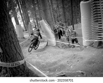 LEOGANG, AUSTRIA - JUNE 15, 2014: Danny Hart of Giant Factory Off-Road Team is seen during pre-final training at the UCI Downhill Mountain Bike World Cup in Leogang, Austria.