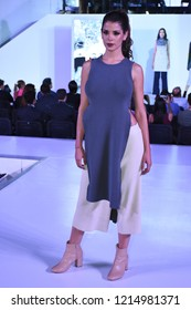 Leon, Mexico. Oct 25, 2018: ANPIC presents Fashion Cocktail Runway with designs of Americana MX brand by Michelle Bedolla and shoes designed by Patey Woman brand. Models by New Face Agency.