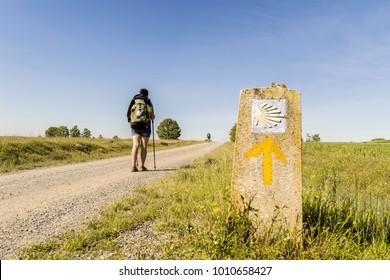 Leon, Spain - May 10, 2014: Pilgrim on the road to Santiago de Compostela in Castilla y Leon