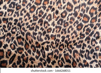 leopard abstract background and patterns
