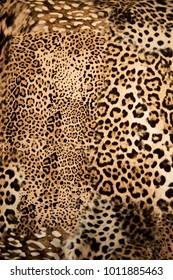 Leopard background texture