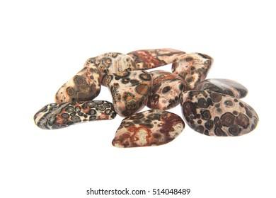 Leopardskin Jasper polished tumblestones on white background - Jaguar Stone