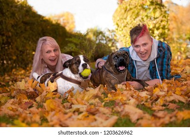 lesbian couple with two mongrel dogs lying on the lawn covered with colorful autumn foliage of maple leaves, they are having fun and excited faces
