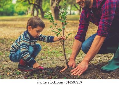 Để tôi giúp anh! Cậu bé giúp cha mình trồng cây trong khi làm việc cùng nhau trong vườn