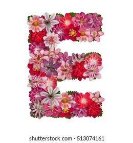 letter E red flowers alphabet