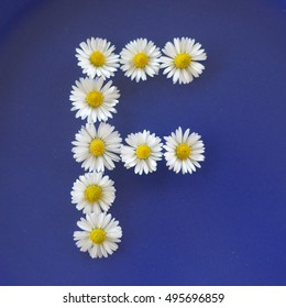 Letter  F  flowers alphabet on a blue background