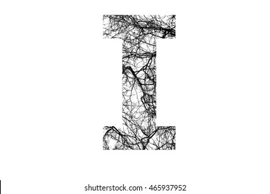 Letter T Cracklike Branches Black White Stock Photo Edit Now