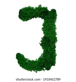 Letter J of the English alphabet made from green stabilized moss, isolated on white background.