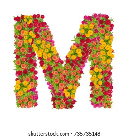 Letter M alphabet made from zinnia flower ABC concept type as logo.Typography design with clipping path