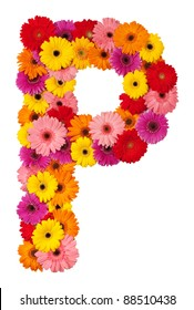 Letter P - flower alphabet isolated on white background