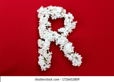 Letter R made from flowers of white lilac on a red background. Flowers composition. Flat lay. Letter R made of white flowers. Spring concept. Floral letters of the alphabet for design and decorati