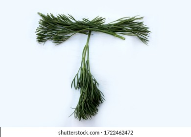 Letter T made from green dill isolated on a white background. Alphabet made of vegetables and herbs. Healthy eating. Capital letter T made from natural green products on a white background