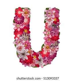 letter U red flowers alphabet