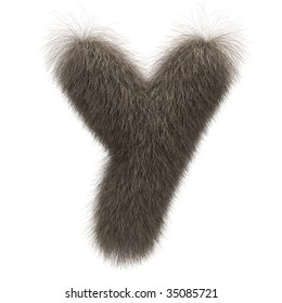 Letter Y from fur alphabet