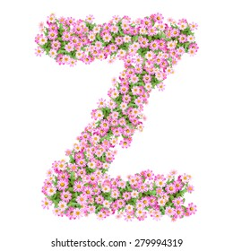 Letter Z alphabet with zinnia flower ABC concept type as logo. Typography design