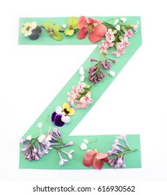 Letter Z Made of Spring Flowers and Paper, on White Background.