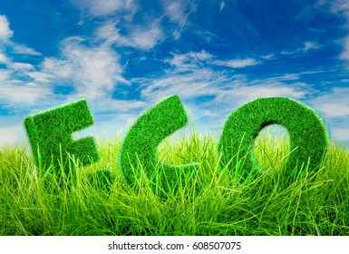 Letters on the green grass on blue sky background. Eco concept.