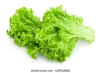 Lettuce leaf isolated on white background close up