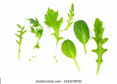 lettuce mix isolated on white background