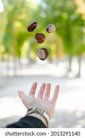 levitujuce gastany v parku vo viedni. nadherna príroda. milujem vieden - Shutterstock ID 2013291140