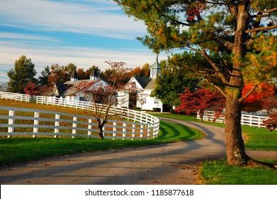 Lexington, KY, USA October 20, 2009 A meandering country road traverses a fall landscape in Kentucky's Blue Grass region near Lexington