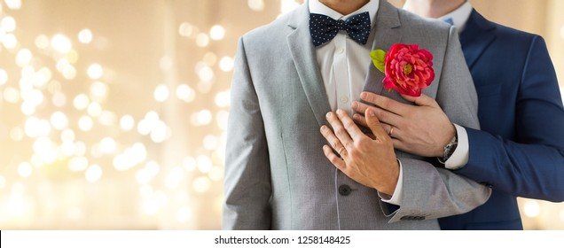 lgbt, homosexuality, same-sex marriage and love concept - close up of happy married male gay couple in suits with buttonholes and bow-ties on wedding over festive lights background