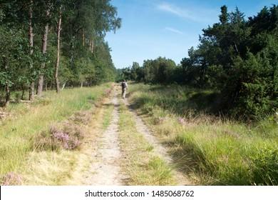 Lheebroek, the Netherlands - August 22, 2019: Walking on the Dwingelderveld, the Netherlands