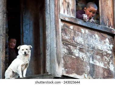 LHO, MANASLU CONSERVATION AREA, NEPAL - NOVEMBER 29: Tibetan boy Lapsang, 9, with white dog poses for a photo at him home on November 29, 2009 in Lho village, Tsum valley, Nepal
